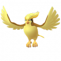 Pidgeot(shiny)